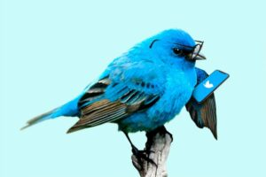 High Profile Twitter Accounts Hacked By Bitcoin Thief