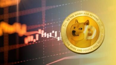 Meme Crypto Dogecoin Spikes, Ranking Among Top 10 Crypto Assets