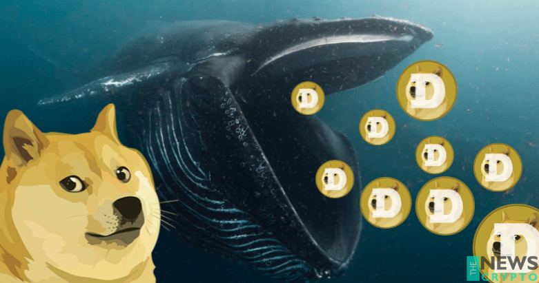 A Mystical Whale Holds Worth $15 Billion of Dogecoin