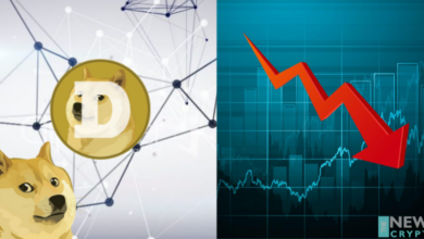 The Chronicle Rise of Dogecoin, Now Suffers From Drop-In Dollar Value