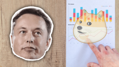 Elon Musk Degrades Doge and Crypto
