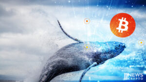 Whale's Purchase on Bitcoin Is Rising