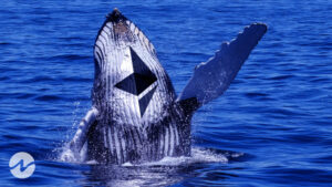 Ethereum Whales Constantly Accumulating ETH and Holds 21.3M ETH