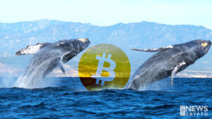 Bitcoin(BTC) Raised High After Supply Held by Whale Entities