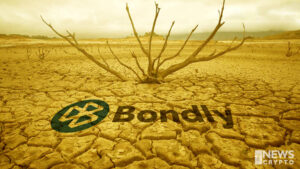 BONDLY Token Price Drops As Bondly Finance Suffers Latest DeFi Attack