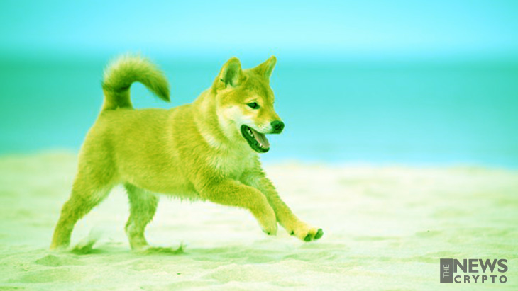 Dogecoin Trading Volume Shoots Up to $1B in Q2