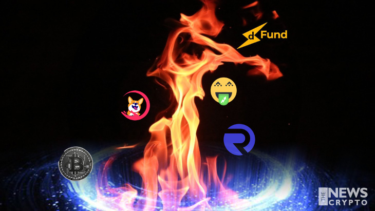 Top 5 Crypto Tokens on Fire Right Now