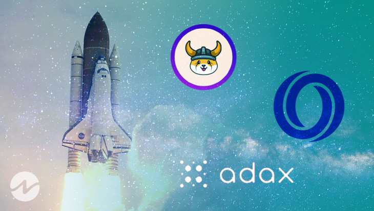 100X Crypto Altcoin Gems Ready to Explode by August