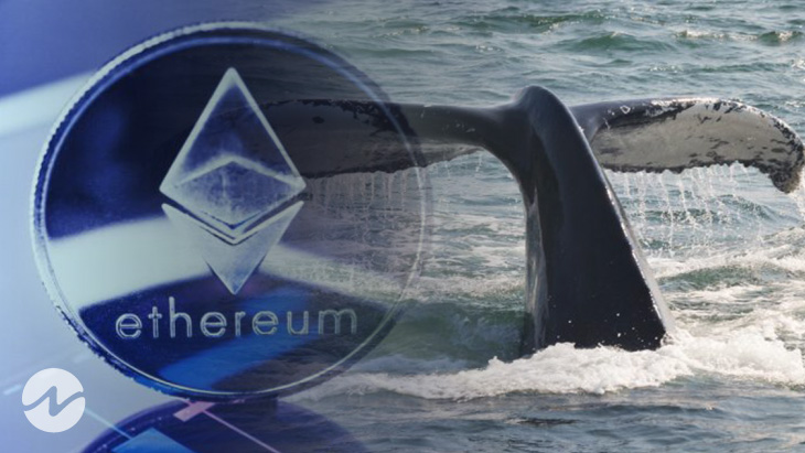 Whale Alert — Over $36,800,000 Worth ETH Transferred From Unknown Wallet