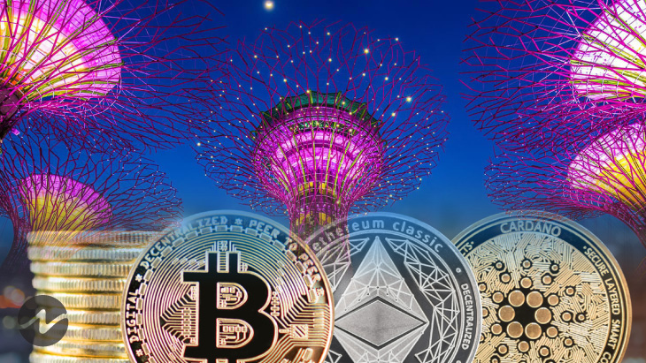 Top 3 Cryptocurrencies in Favor for Singapore Investors