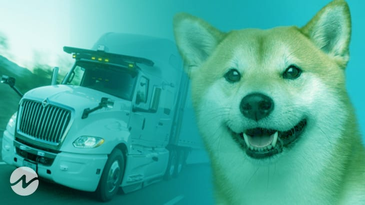 Truck Driver Regains 10 Million Doge Through Wallet recovery service