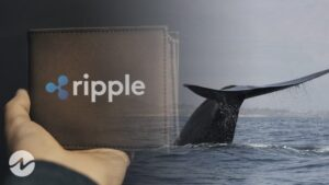 Whale Alert-8,000,000 XRP Transferred From an Unknown Wallet