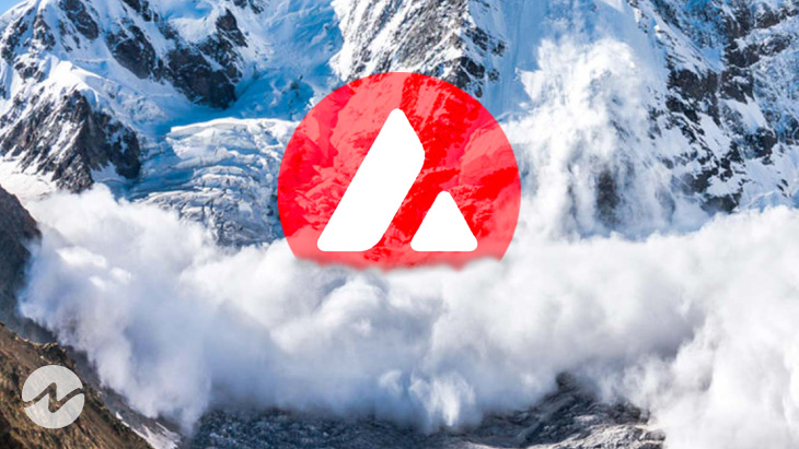 3 Reasons Drives Avalanche (AVAX) to New Heights
