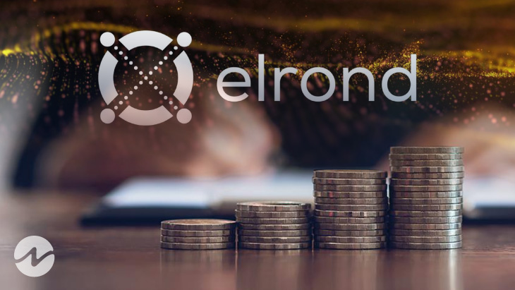 What's Behind Elrond (EGLD) Daily Surges?