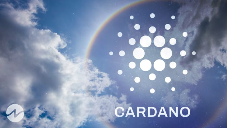 Hoskinson Calls Out Doubters as Cardano NFT Transfer Volume Nears Ethereum