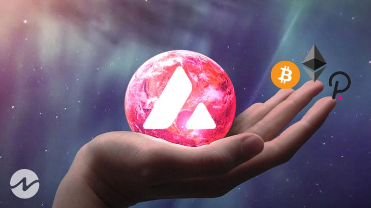 Avalanche Has Better Ecosystem Than Top Coins?