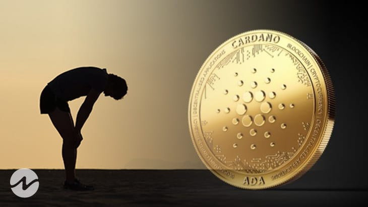 Cardano (ADA) Needs Retail Trader's Support to Avoid Downfall