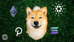 Analyst Advises Investors to Shift From Shiba Inu (SHIB) To Other Altcoins